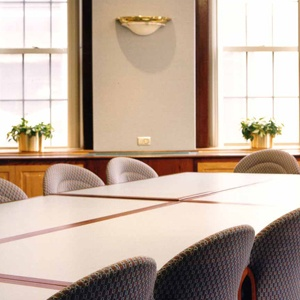 ICON-HEALTHCARE-HOSPITAL-OF-ST-RAPHAEL-SELENA-LEWIS-BOARDROOM.jpg