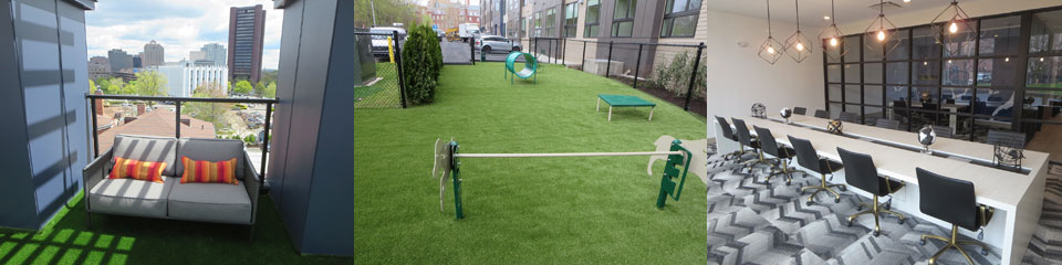 Parkside-City-Crossing-roof-deck-dog-park-library